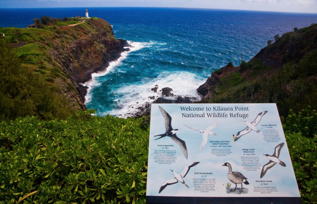 Kilauea National Wildlife Refuge Hawaii