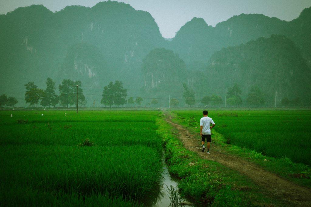 Trang An Ninh Binh Vietnam By Seb [Source : unsplash]