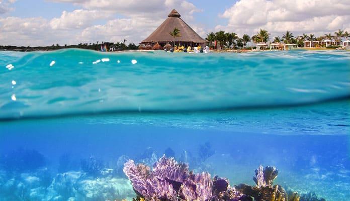 Cancun Underwater [globosurfer.com]